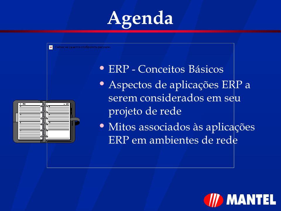 Agenda ERP - Conceitos Básicos