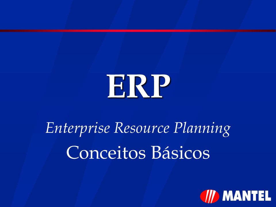 Enterprise Resource Planning Conceitos Básicos