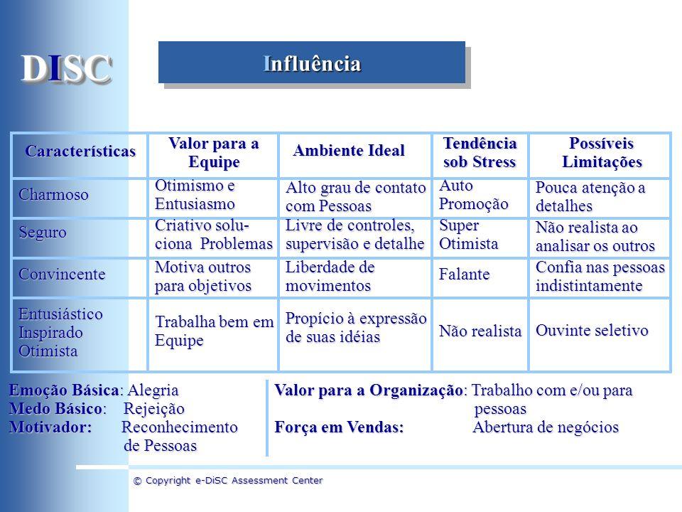 DISC Influência Características Valor para a Equipe Ambiente Ideal