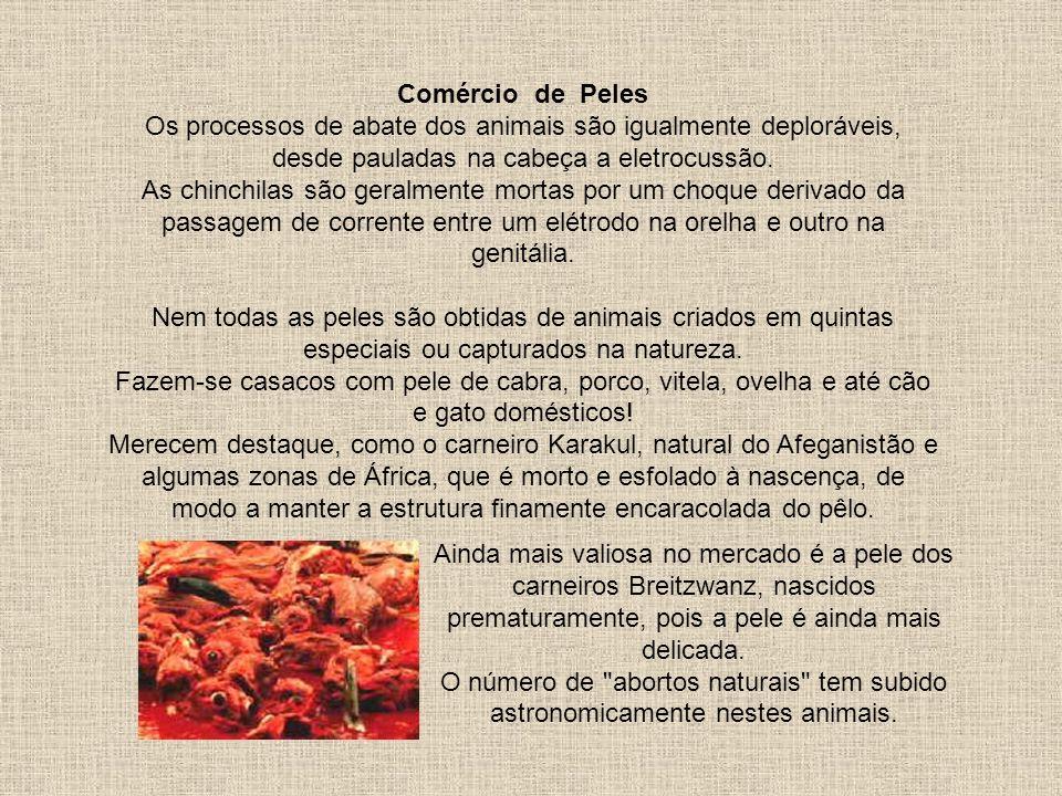 Comércio de Peles Os processos de abate dos animais são igualmente deploráveis, desde pauladas na cabeça a eletrocussão.