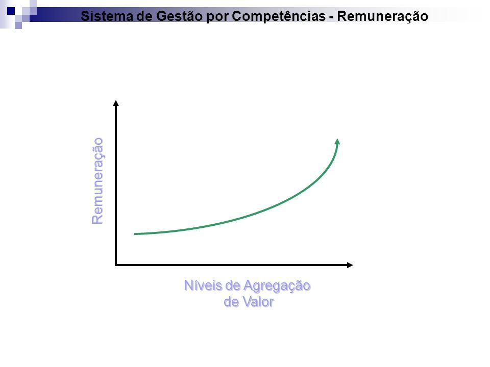 Sistema de Gestão por Competências - Remuneração