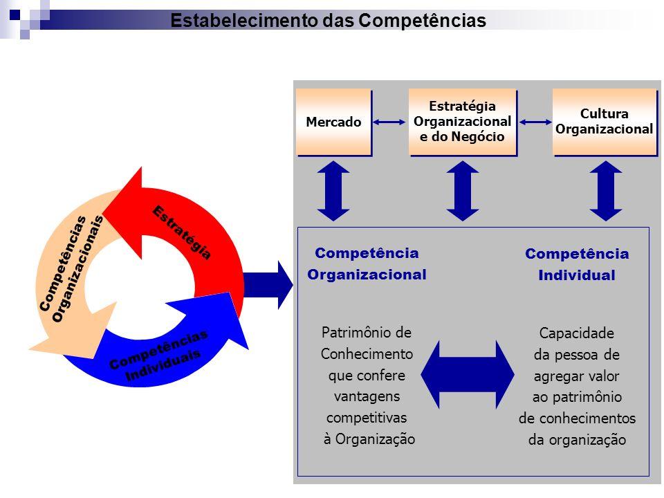 Estabelecimento das Competências