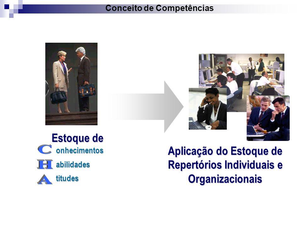Aplicação do Estoque de Repertórios Individuais e Organizacionais