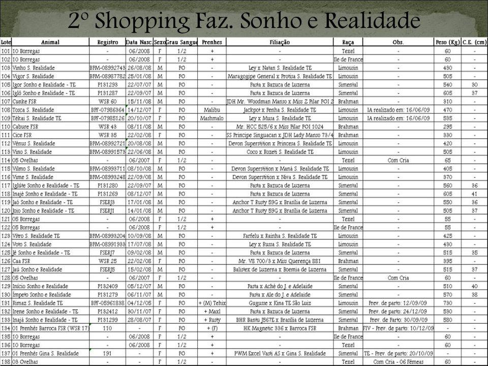2º Shopping Faz. Sonho e Realidade