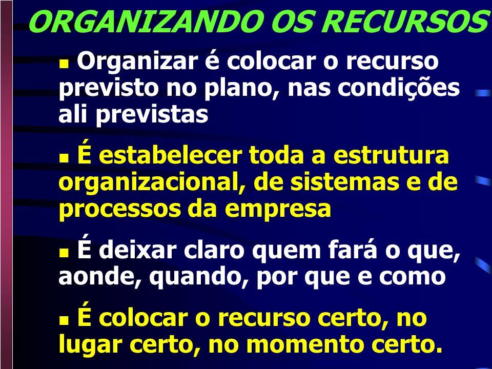 ORGANIZANDO OS RECURSOS