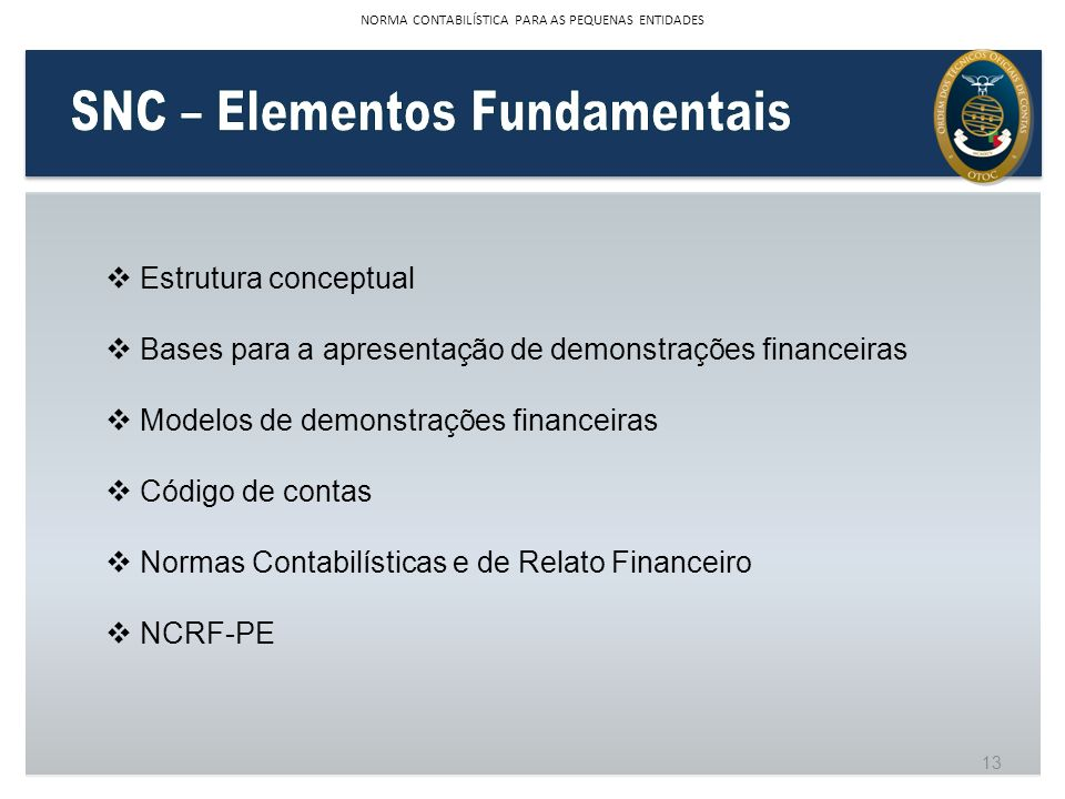 SNC – Elementos Fundamentais