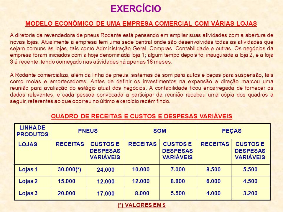 EXERCÍCIO MODELO ECONÔMICO DE UMA EMPRESA COMERCIAL COM VÁRIAS LOJAS