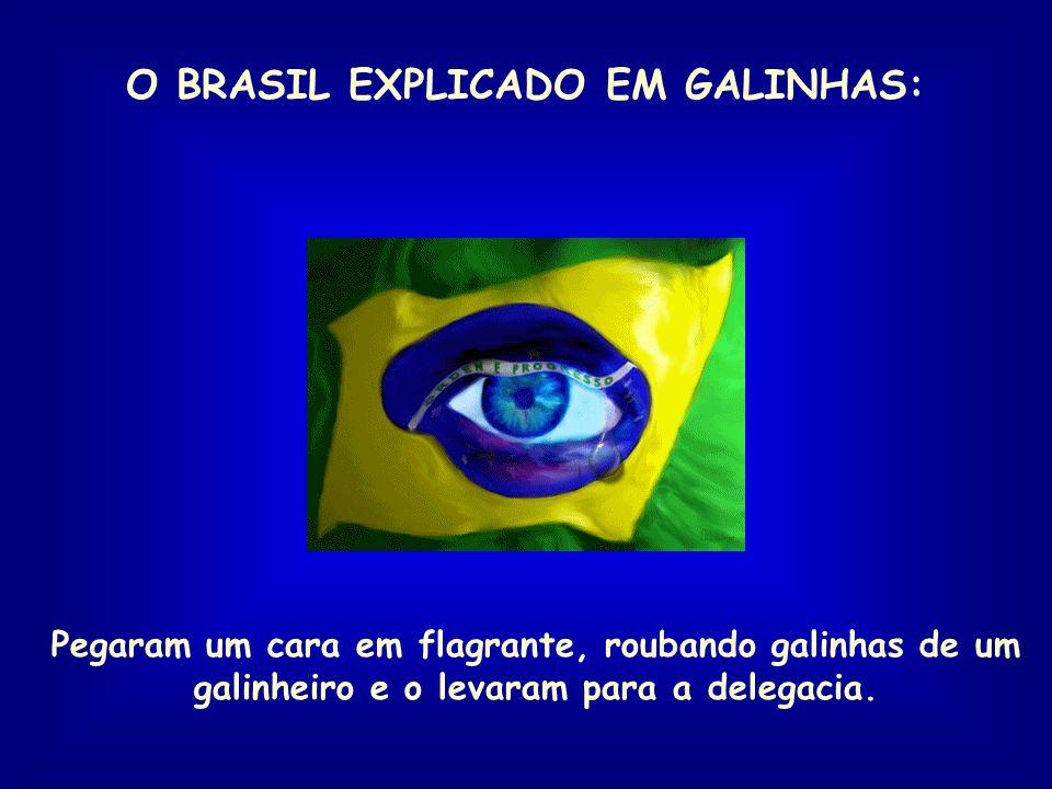 O BRASIL EXPLICADO EM GALINHAS: