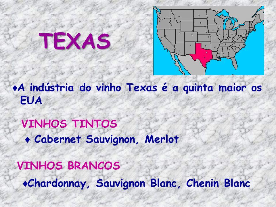 TEXAS A indústria do vinho Texas é a quinta maior os EUA VINHOS TINTOS