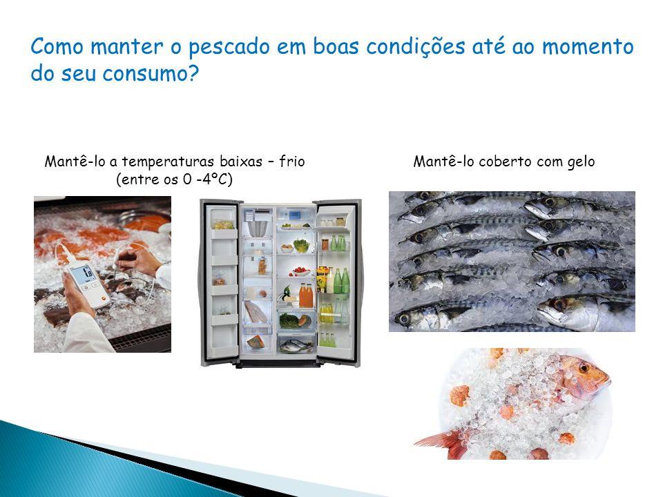 Como manter o pescado em boas condições até ao momento do seu consumo