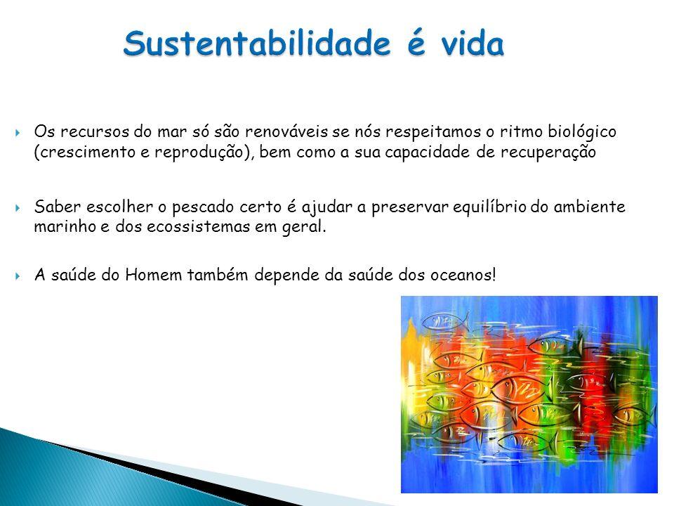 Sustentabilidade é vida