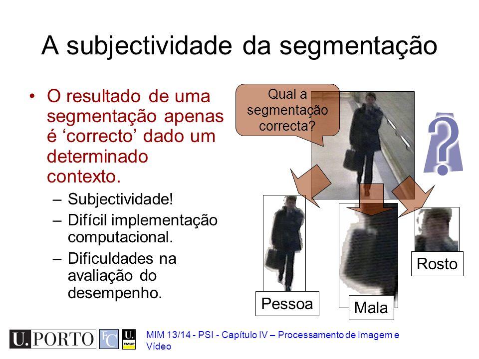 A subjectividade da segmentação