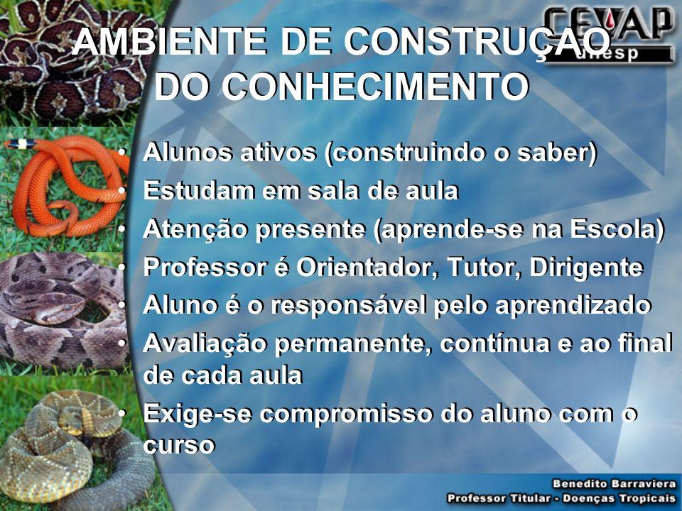 AMBIENTE DE CONSTRUÇAO DO CONHECIMENTO