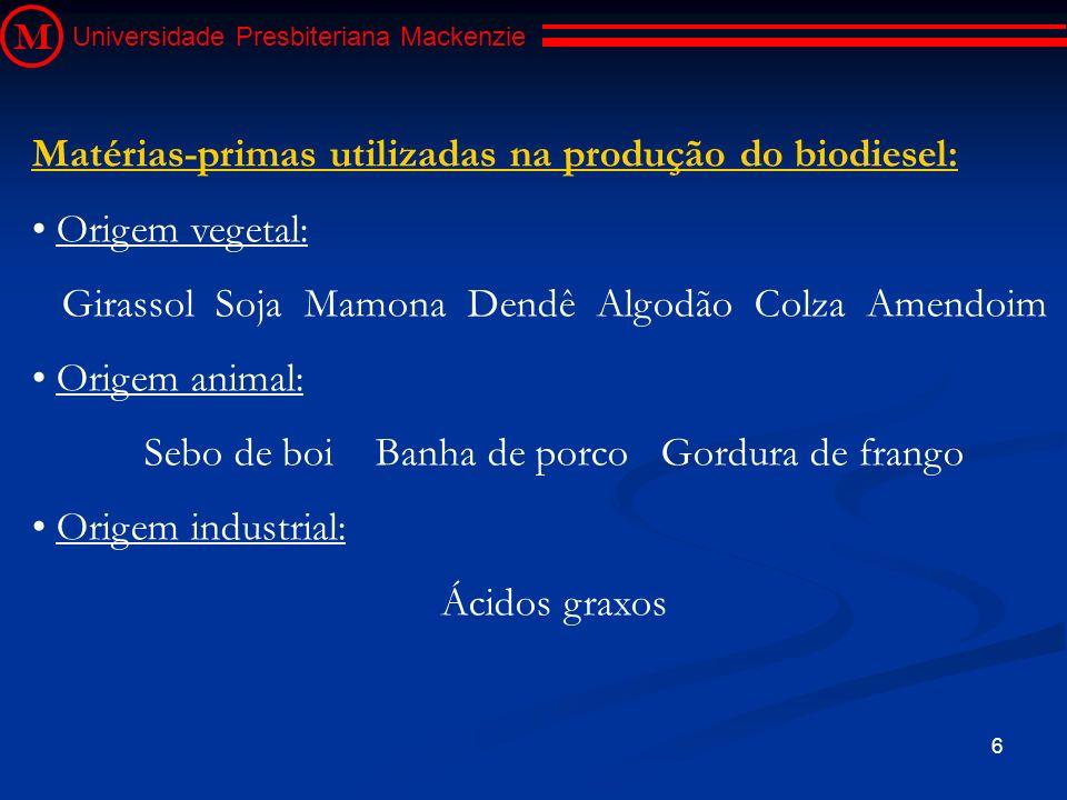 Matérias-primas utilizadas na produção do biodiesel: Origem vegetal: