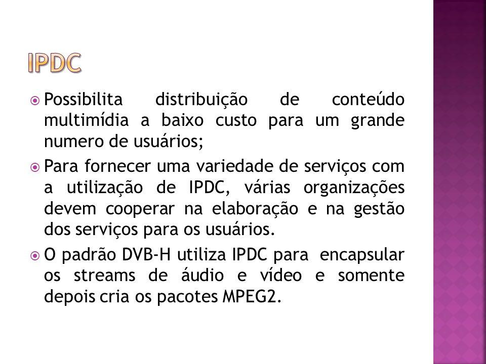 ipdc Possibilita distribuição de conteúdo multimídia a baixo custo para um grande numero de usuários;