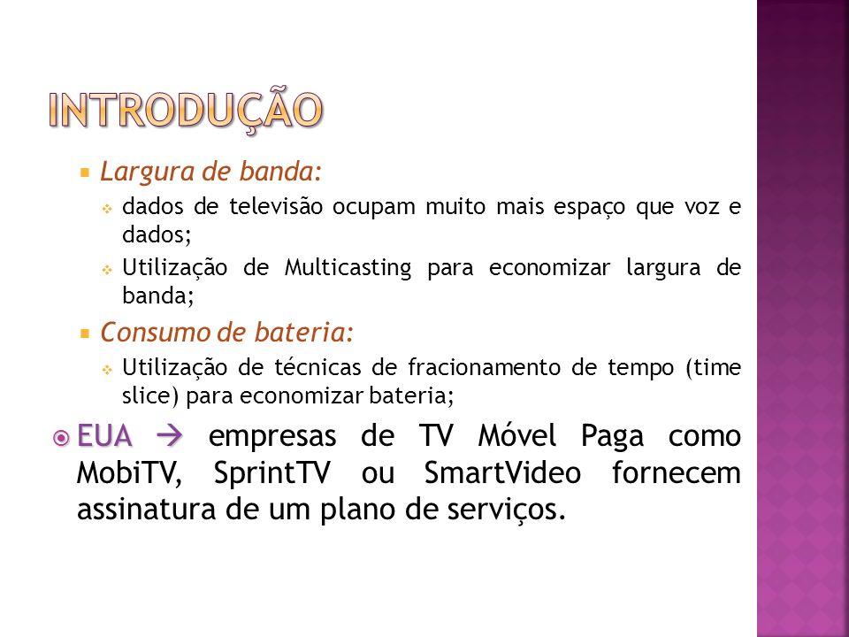 Introdução Largura de banda: dados de televisão ocupam muito mais espaço que voz e dados;