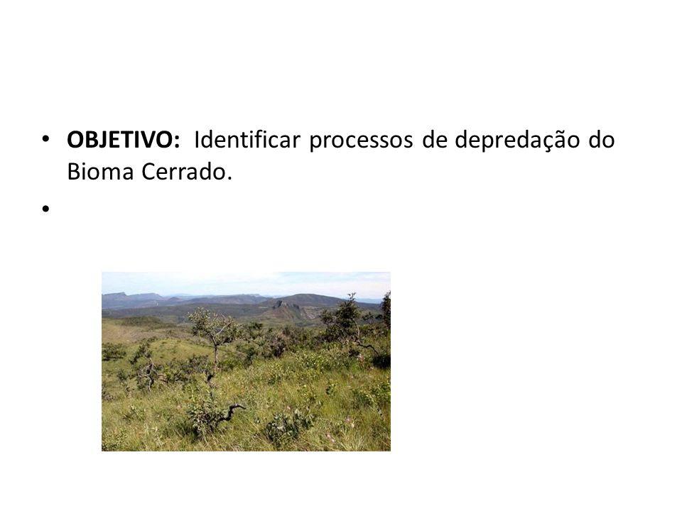 OBJETIVO: Identificar processos de depredação do Bioma Cerrado.