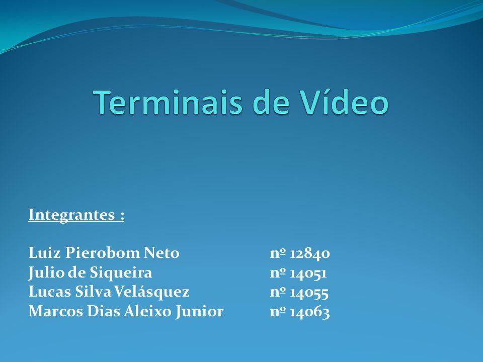 Terminais de Vídeo Integrantes : Luiz Pierobom Neto nº 12840