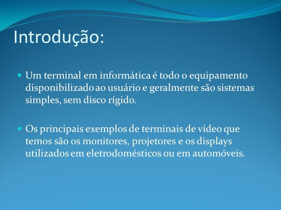 Introdução: Um terminal em informática é todo o equipamento disponibilizado ao usuário e geralmente são sistemas simples, sem disco rígido.
