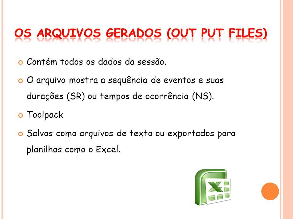 Os arquivos gerados (Out put files)