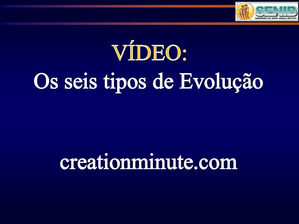 Os seis tipos de Evolução