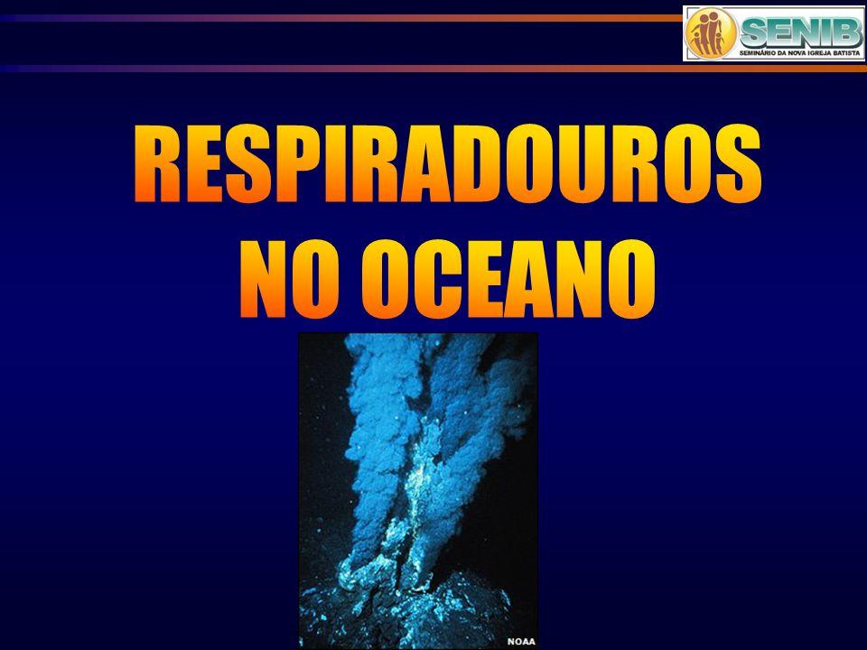 RESPIRADOUROS NO OCEANO
