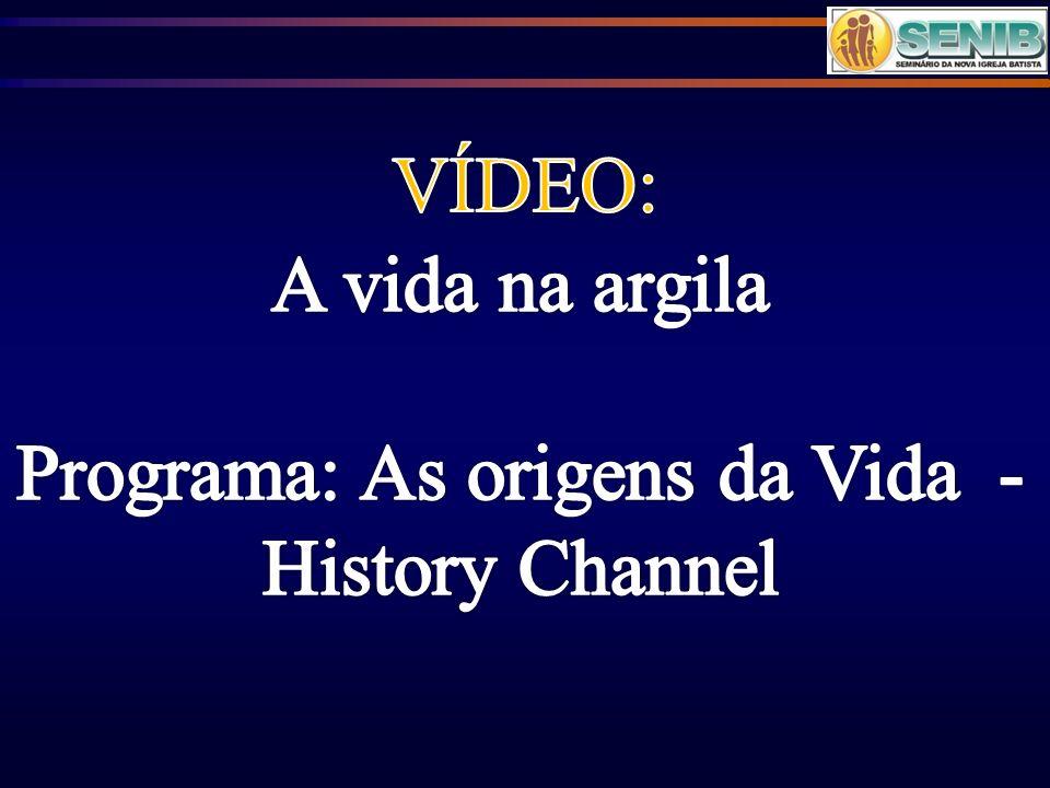 Programa: As origens da Vida - History Channel