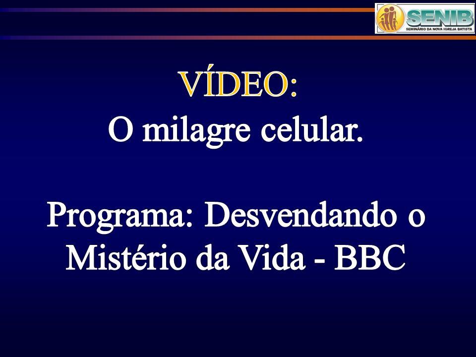 Programa: Desvendando o Mistério da Vida - BBC
