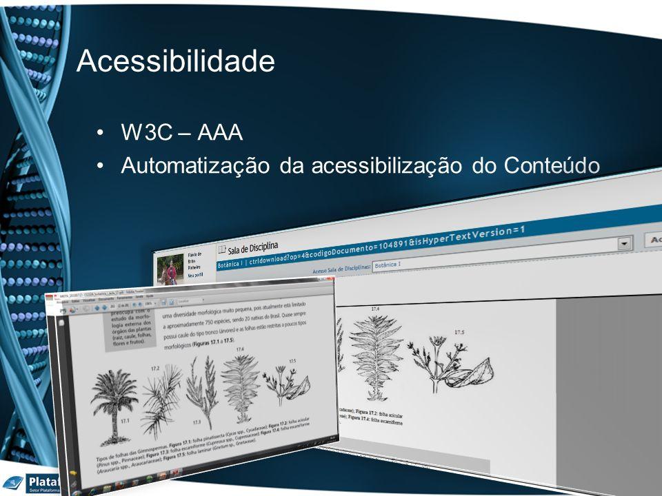 Acessibilidade W3C – AAA Automatização da acessibilização do Conteúdo
