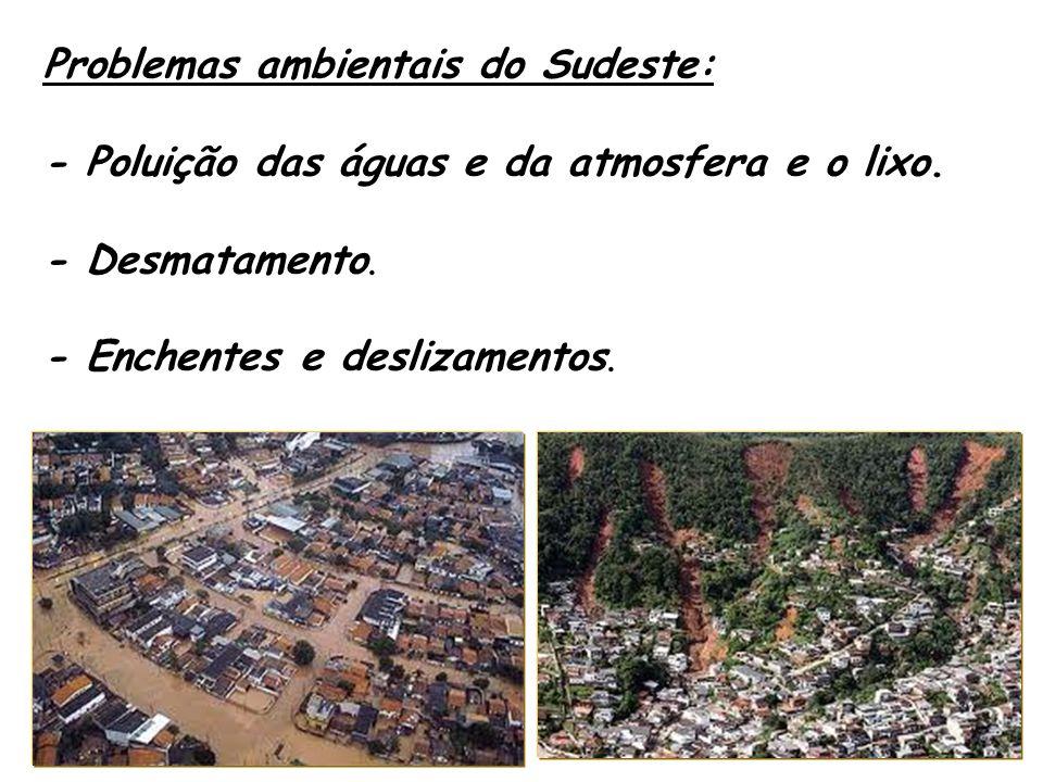 Problemas ambientais do Sudeste: