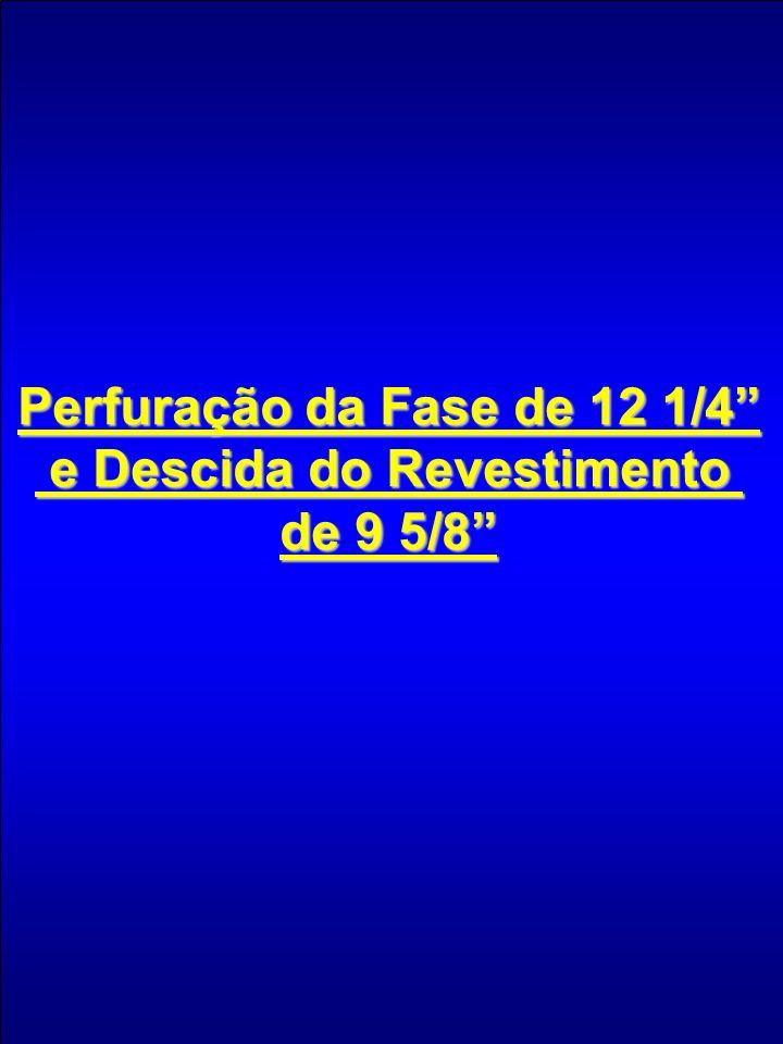 Perfuração da Fase de 12 1/4 e Descida do Revestimento