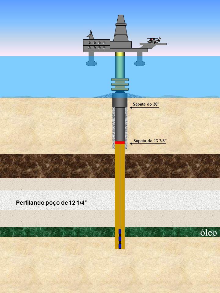Sapata do 30 Sapata do 13 3/8 Perfilando poço de 12 1/4 óleo