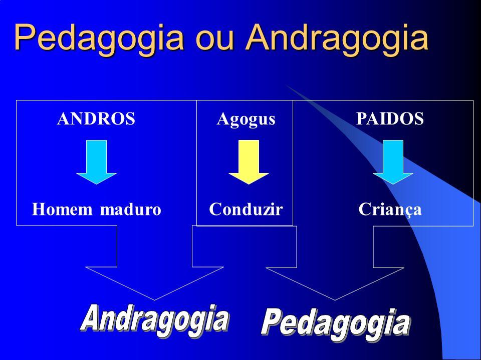 Pedagogia ou Andragogia
