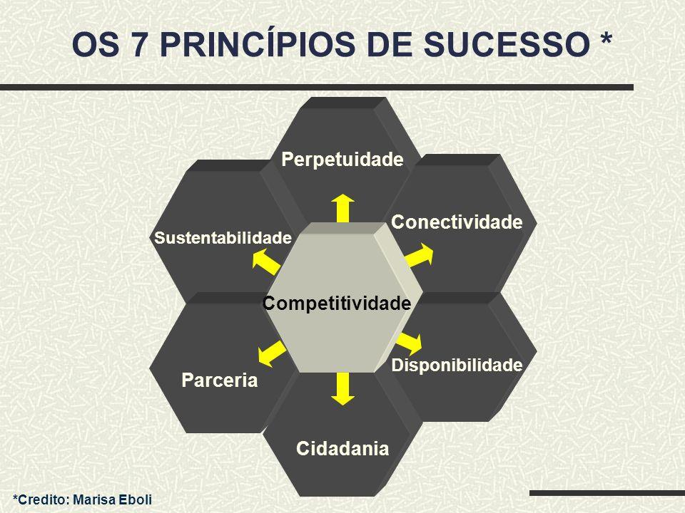 OS 7 PRINCÍPIOS DE SUCESSO *