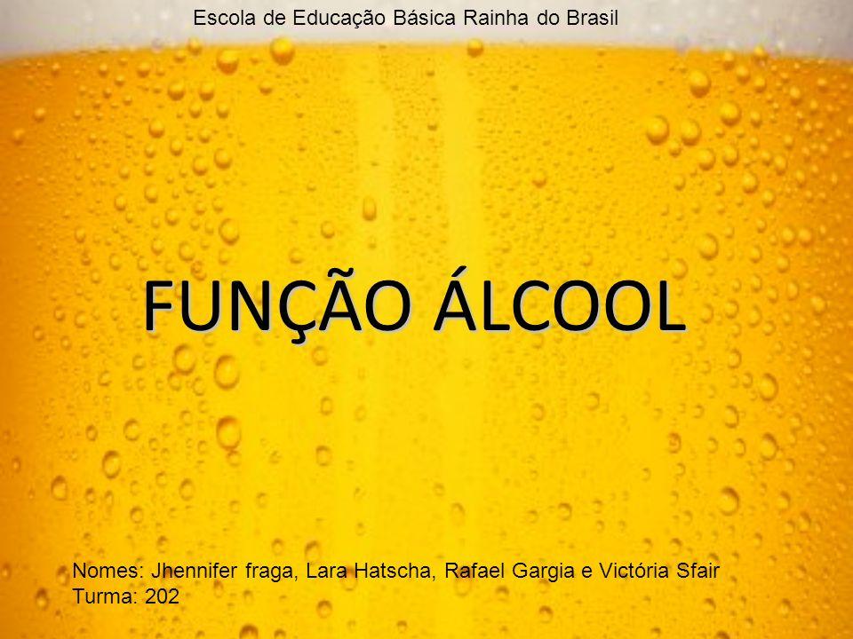 FUNÇÃO ÁLCOOL Escola de Educação Básica Rainha do Brasil