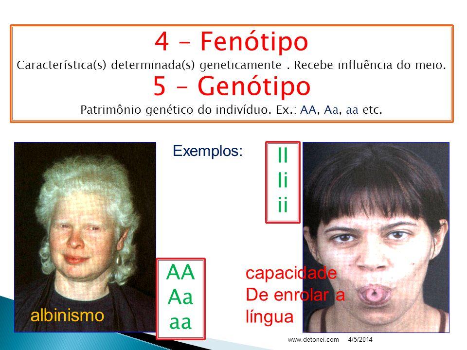 Patrimônio genético do indivíduo. Ex.: AA, Aa, aa etc.