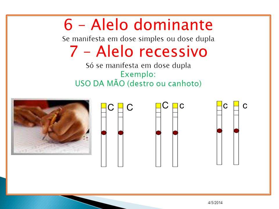 6 – Alelo dominante 7 – Alelo recessivo C c c c C C Exemplo: