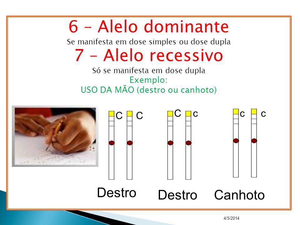 6 – Alelo dominante 7 – Alelo recessivo Destro Destro Canhoto C c c c