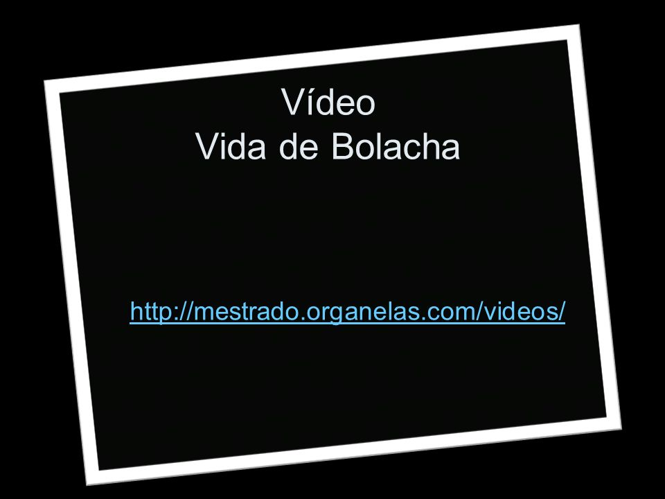 Vídeo Vida de Bolacha http://mestrado.organelas.com/videos/