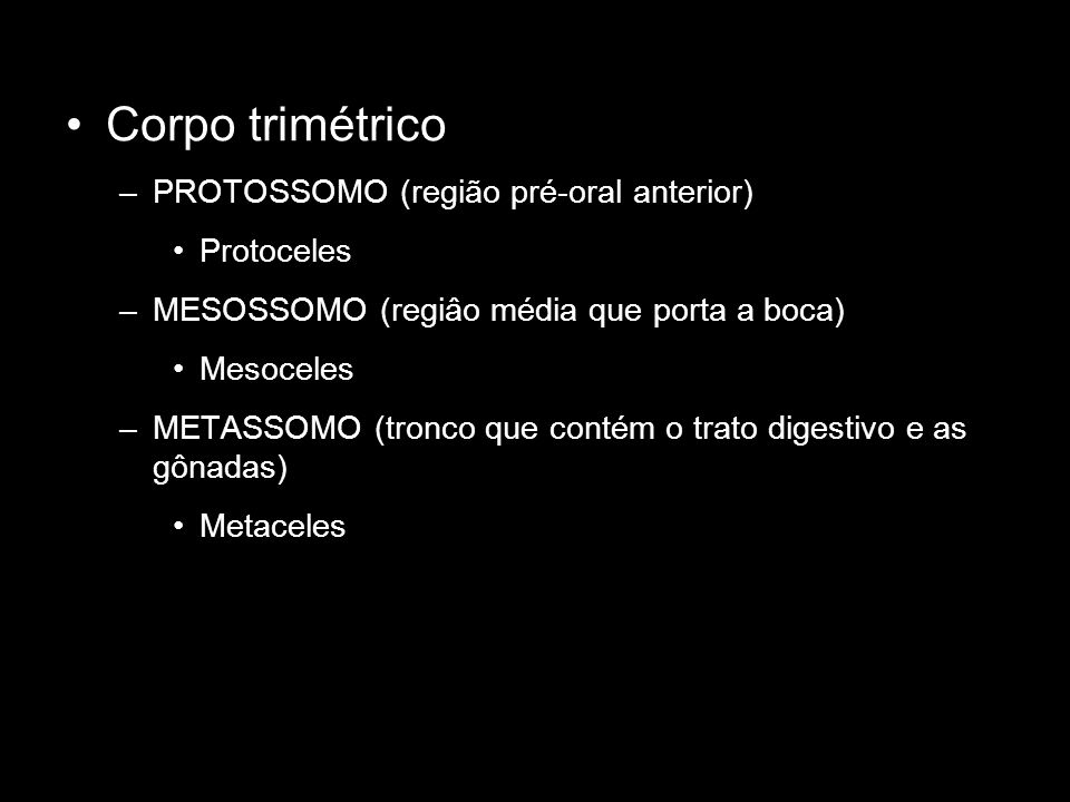 Corpo trimétrico PROTOSSOMO (região pré-oral anterior) Protoceles