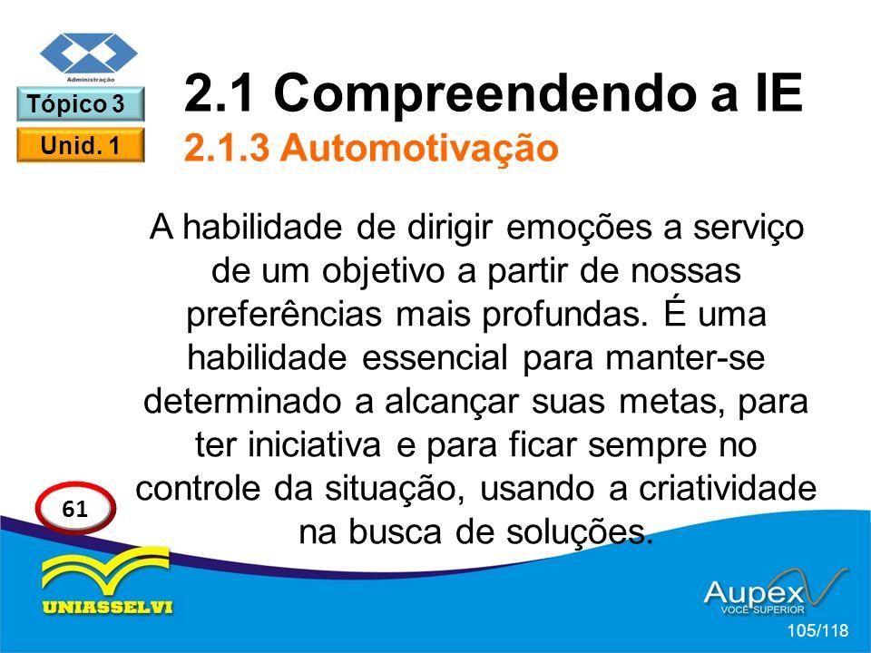 2.1 Compreendendo a IE 2.1.3 Automotivação