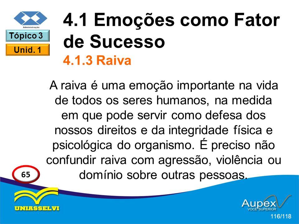 4.1 Emoções como Fator de Sucesso 4.1.3 Raiva