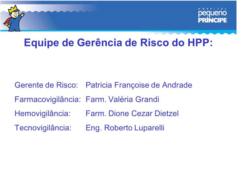Equipe de Gerência de Risco do HPP: