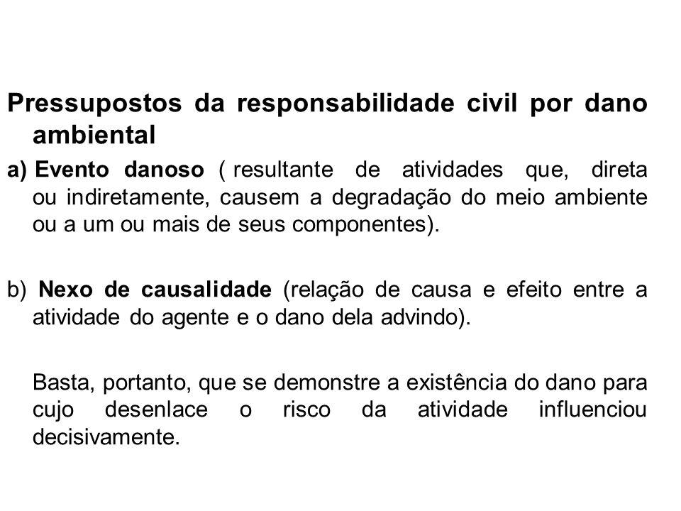 Pressupostos da responsabilidade civil por dano ambiental