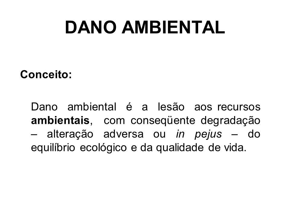 DANO AMBIENTAL Conceito: