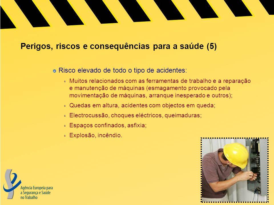 Perigos, riscos e consequências para a saúde (5)