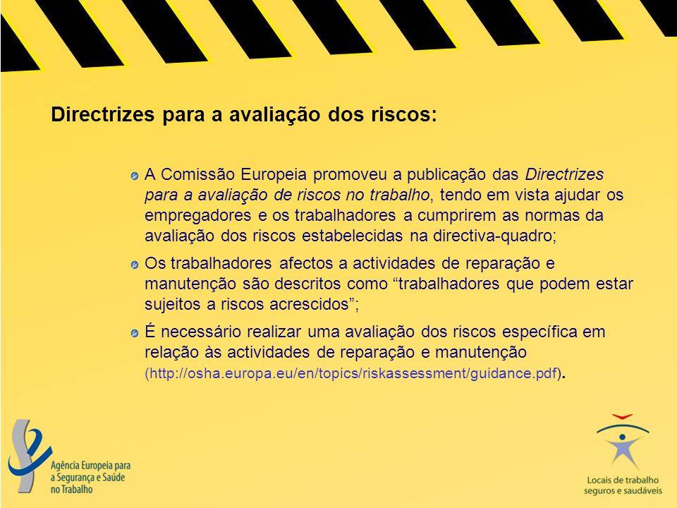 Directrizes para a avaliação dos riscos: