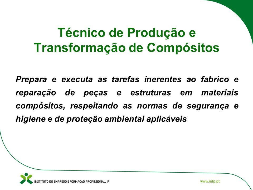 Técnico de Produção e Transformação de Compósitos