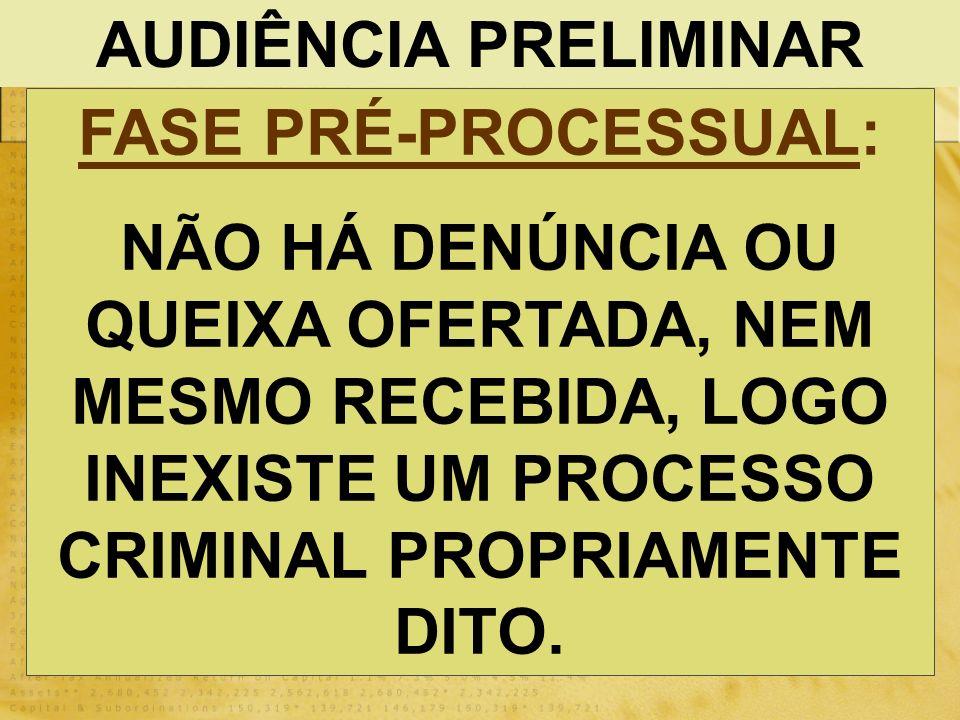 AUDIÊNCIA PRELIMINAR FASE PRÉ-PROCESSUAL: