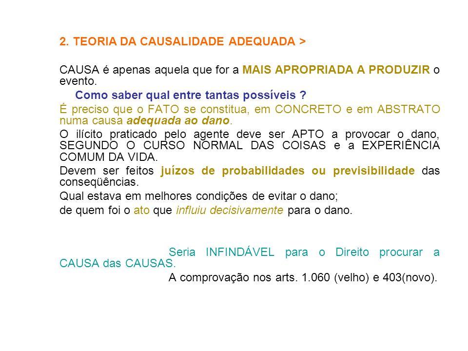 2. TEORIA DA CAUSALIDADE ADEQUADA >